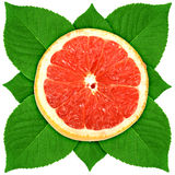 Сross section of grape-fruit with green leaf Stock Images