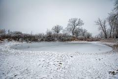 Цinter landskap i Ryssland Royaltyfri Fotografi