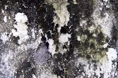 Абстрактная запачканная предпосылка старой поверхности стены с коричневыми, зелеными и белыми грубыми пятнами и волны отказов стоковые изображения