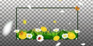 Абстрактная рамка с цветками весны бесплатная иллюстрация