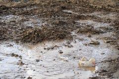 авария трубопровод прорыва оно пропускает в улицу грязь и песок сформированы последствие ремонта стоковое изображение