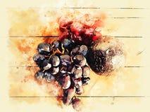 Авокадо и виноградины конца-вверх на деревянной текстуре на картине иллюстрации акварели иллюстрация штока