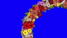 Анимация завихряясь кольца цветков на голубой предпосылке Ключ chroma Видео петли сток-видео