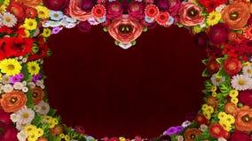 Анимация завихряясь цветков формируя силуэт сердца на красной праздничной предпосылке Шаблон для приветствий для видеоматериал