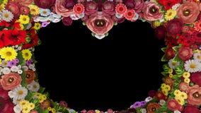 Анимация завихряясь цветков формируя силуэт сердца на черной предпосылке Шаблон для приветствий для свадьбы акции видеоматериалы