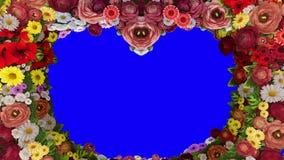Анимация завихряясь цветов формируя силуэт сердца на голубой предпосылке Шаблон для приветствий для свадьбы сток-видео