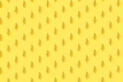 Апельсины на яркой покрашенной желтой предпосылке Повторение картины, подготовка для настроения цитруса обоев стоковые фото