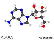 Аденозин, нуклеозид, молекула нейротрансмиттера модельная иллюстрация штока