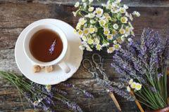 Аromatic lavender tea and wild chamomile. Аromatic lavender tea and wild chamomile. Top view on wooden background, focus selective stock photo