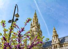 Башни городской ратуши Вены весной, Австрия стоковое изображение rf