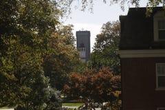 Башня между деревом в расстоянии стоковые фотографии rf
