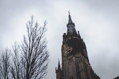 Башня Nieuwe Kerk, новой церков, в старом центре города Делфта стоковая фотография rf