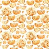 Безшовная картина, который слезли tangerine и кусков изолированных на белой предпосылке изображение иллюстрации летания клюва дек иллюстрация штока