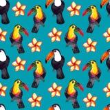 Безшовная картина природы акварели hyperrealistic тропиков toucans Азии - черно-белых и покрашенных и plumeria стоковое изображение rf