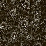 Безшовная картина с белыми daffodils на черной предпосылке бесплатная иллюстрация