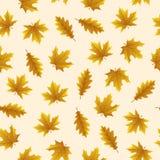 Безшовная картина с листьями осени на желтой предпосылке, для любого случая иллюстрация вектора