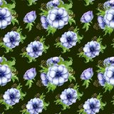 Безшовная картина с цветками ветреницы акварели белыми пурпурными Дизайн весны флористический для приглашения свадьбы бесплатная иллюстрация