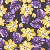 Безшовная картина с цветками и листьями акварели иллюстрация штока