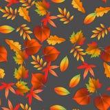 Безшовно с красными и желтыми листьями осени также вектор иллюстрации притяжки corel иллюстрация штока