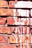Белые пятна краски, гипсолит на красном конце поверхности кирпичной стены вверх по детали, предпосылке grunge вертикальной стоковая фотография rf