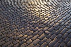 Близкий поднимающий вверх взгляд влажного, темного и sunlit мостит булыжником вымощенную улицу, Эдинбург стоковые изображения rf