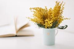 Букет цветка мимозы Международный день ` s женщин Пасха, концепция весны стоковое фото rf