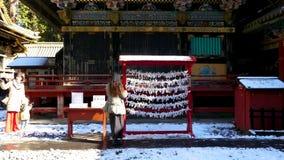 Бумажные желания на святыне Toshogu видеоматериал