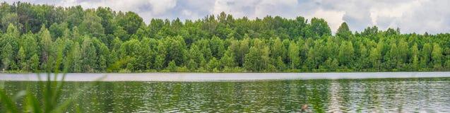 Большая панорама озера с зеленым лесом стоковое фото rf