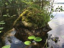 Большой валун в воде около берега в озере стоковая фотография