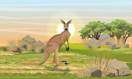 Большой красный цвет на равнине с камнями, сухой травой и деревьями бесплатная иллюстрация