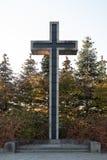 Большой крест на кладбище стоковое фото