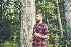 Бородатый парень с лопатой бродяжничая в древесинах Lumberjack взгляда со стороны зверский ждать на пути Природа, располагаясь ла стоковая фотография rf