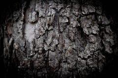 вал текстуры расшивы предпосылки Снимите кожу с расшивы дерева тот трескать трассировок стоковое фото rf
