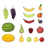 Вектор установил плодов мультфильма Виноградины, дыня, арбуз, груша, Яблоко, банан, абрикос, персик, слива, гранатовое дерево бесплатная иллюстрация