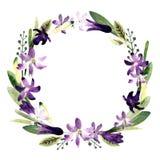 Венок с цветками, листьями, травами Иллюстрация акварели на белой предпосылке иллюстрация вектора