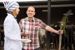 Ветеринар фермы и профессиональное положение работника около доить табуна в амбаре и усмехаться стоковое изображение