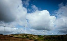 Ветротурбины производя электричество с голубым небом стоковые изображения rf