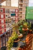 Взгляд к улице от балкона вполне цветков стоковое фото