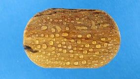 Взгляд сверху, вращение старой деревянной овальной доски в дождевых каплях изолировано сток-видео