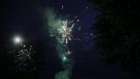 Взгляд фейерверков и салюта от расчистки расположенной во французских Альп в Courchevel Сгорите выставку ноча покрашенные света акции видеоматериалы