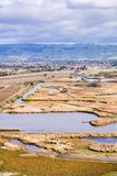 Взгляды болота, парк холмов койота региональный, восточный San Francisco Bay, Fremont, Калифорния стоковые изображения