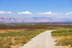 Взгляды южной области San Francisco Bay как увидено от парка Byxbee, Пало-Альто, Калифорния стоковое изображение rf
