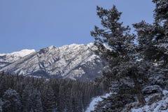 Взгляд раннего утра гор окружая городок Banff, Альберты стоковое изображение rf