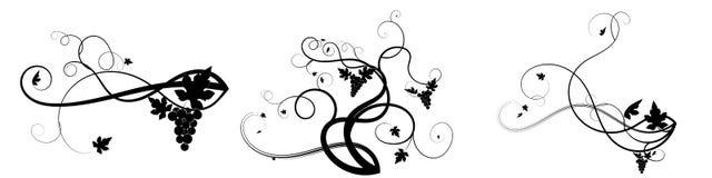 Виноградины сплетя запутанный завод черным по белому иллюстрация вектора