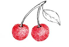 Cherry branch watercolor sketch juiciness stock illustration