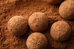 Вкусные трюфеля шоколада на буром порохе стоковые изображения rf