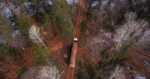 Внося в журнал тележка нагруженная со свежо пиломатериалами управляет вдоль дороги леса в taiga среди валить деревьев видеоматериал