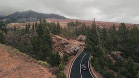 Воздушная съемка Камера взлета над treetops дорога асфальта черной езды автомобиля новая идеально плоская водя далеко в сток-видео