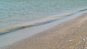 Волна моря на песчаном пляже сток-видео