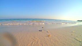 Волна пляжа акции видеоматериалы